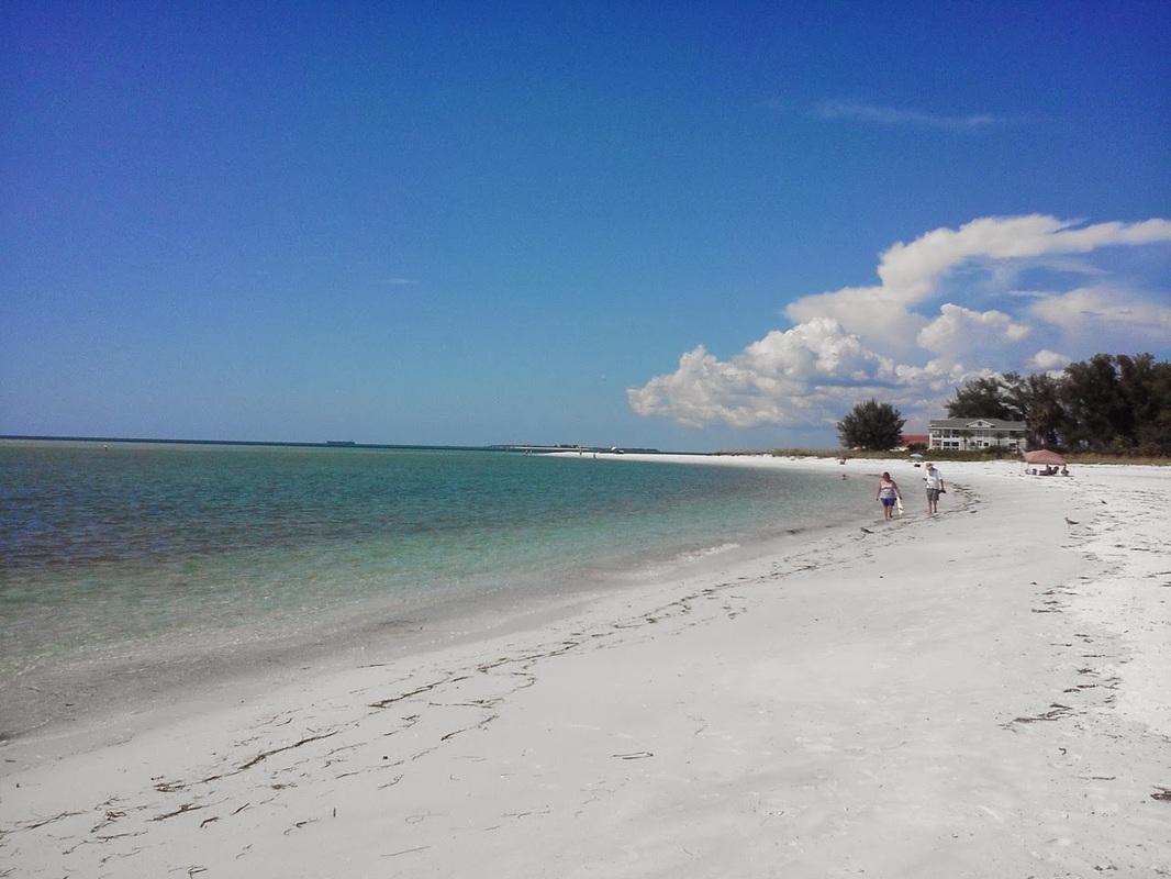 Image Result For Bradenton Florida Beach Homes For Sale